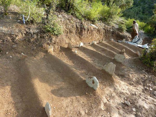 Afghan graves