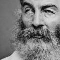 Whitman at War