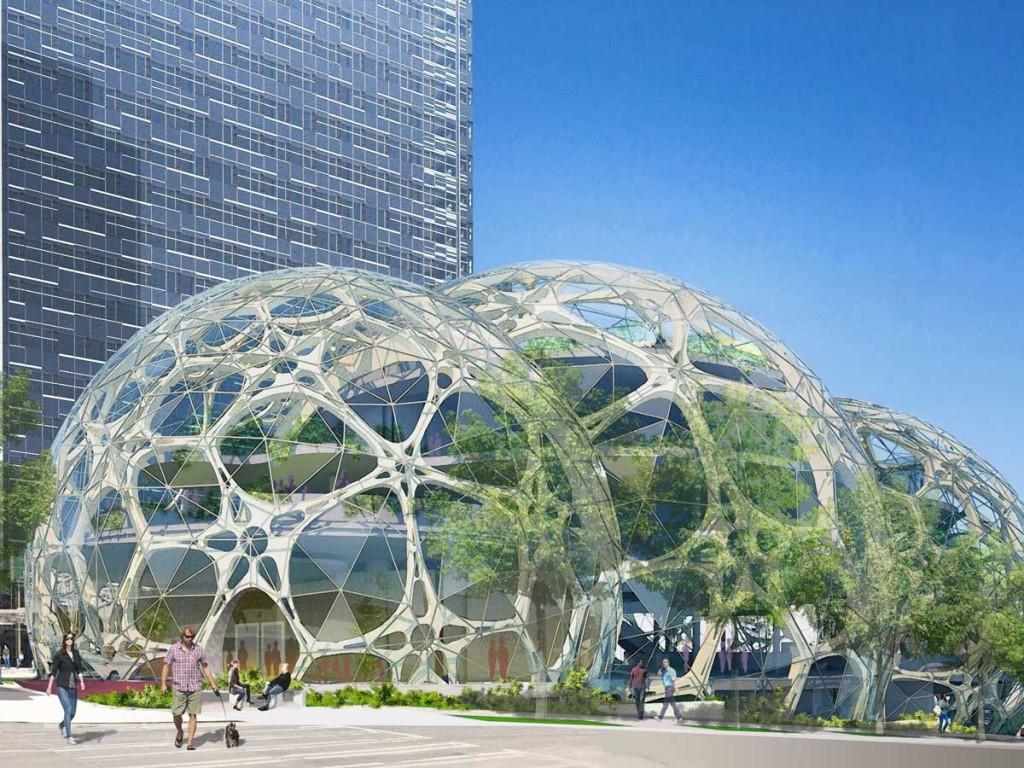 Amazon-biosphere