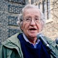 The Chomsky Effect With Robert Barsky